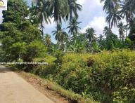 10.5Hectares Farm Lot for Sale in Davao City